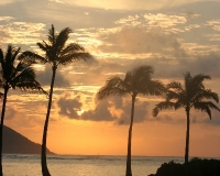 Hawaii sunrise by photographer miyuki edwards