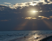 Sanibel sunrise by photographer miyuki edwards