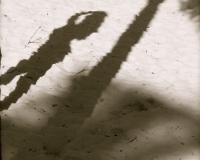Bahamas shadow by photographer miyuki edwards