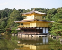 golden temple photograph by miyuki edwards