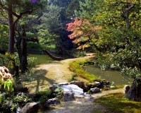 japanese garden photograph by miyuki edwards